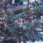 クリスマス直前ドタキャンは彼氏・彼女(夫・嫁)の浮気や不倫確定?