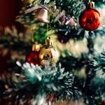 クリスマスのトゲトゲの葉っぱや赤い実の名前や意味由来は?